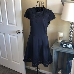 NWT Ted Baker Cheskka A-Line Dress in Navy